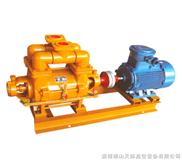 SKF-6-15系列耐腐蚀液环式真空泵及压缩机组