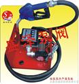 直流计量电动油泵/防爆电动油泵/直流油泵