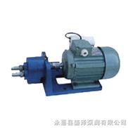 輸油泵/內嚙合擺線齒輪泵/不銹鋼齒輪油泵