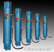 海水潜水泵,天津海水泵