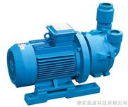 2BV水環真空泵