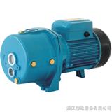 XDPm255A/1家用喷射泵/家用潜水泵/家用泵价格