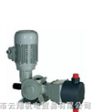 意大利DOSEURO(道茨)计量泵