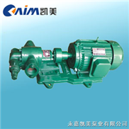 2CY-2CY系列齿轮油泵 卧式齿轮油泵 不锈钢齿轮油泵