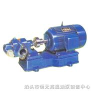 油泵/齿轮油泵/高温齿轮油泵