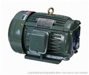YI-SHING油泵YI-SHING电机