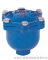 ARVX微量自動排氣閥