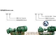 齒輪油泵,防爆齒輪油泵