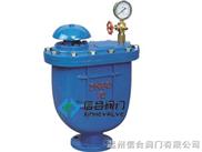CARX-复合式排气阀