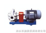 KCB300B型不銹鋼防腐齒輪泵