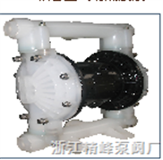 RW25PP气动隔膜泵