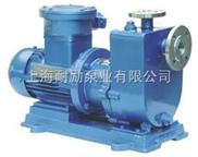 ZCQ型不銹鋼自吸磁力泵
