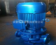 耐腐蝕管道離心泵  IHG化工泵 單級立式化工泵
