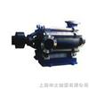 D型申太上海-D型多级泵